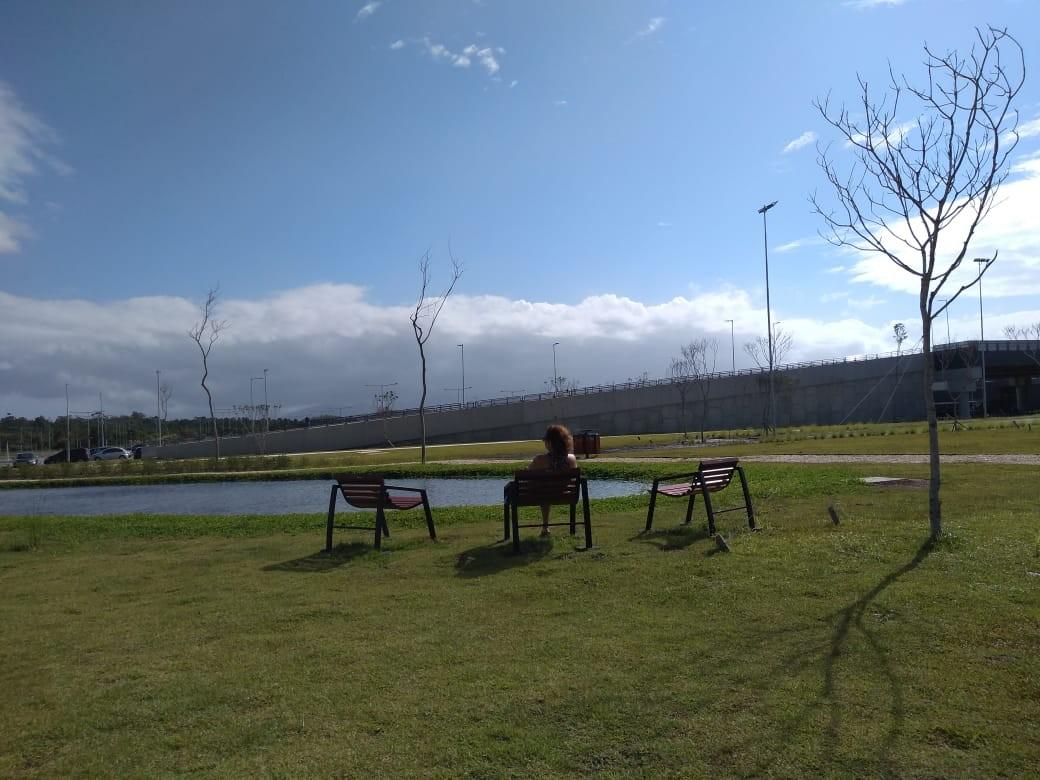Domingo amanhece com frio em SC, mas sol prevalece durante o dia
