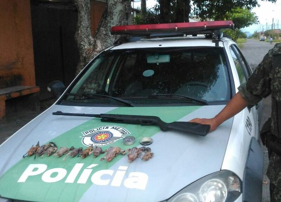 Aves nativas foram encontradas com ambulante que vende espetinhos na praia (Foto: Divulgação/Polícia Militar Ambiental)