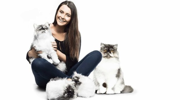 Também há pantufas de gatos (Foto: Divulgação/Cuddle Clone)