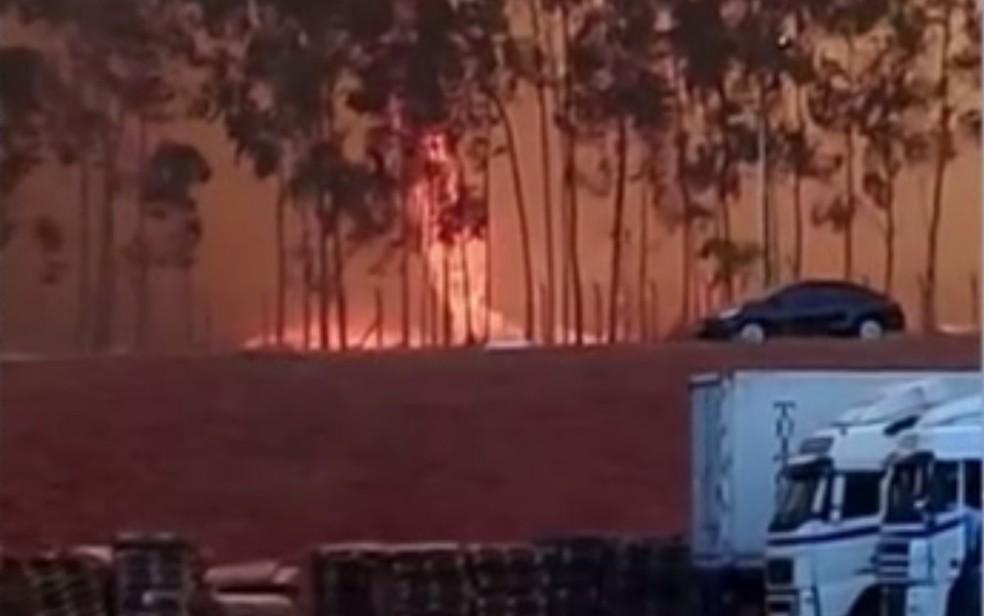 Redemoinho de fogo se formou perto de frigorífico em Palmeiras de Goiás — Foto: Reprodução/TV Anhanguera