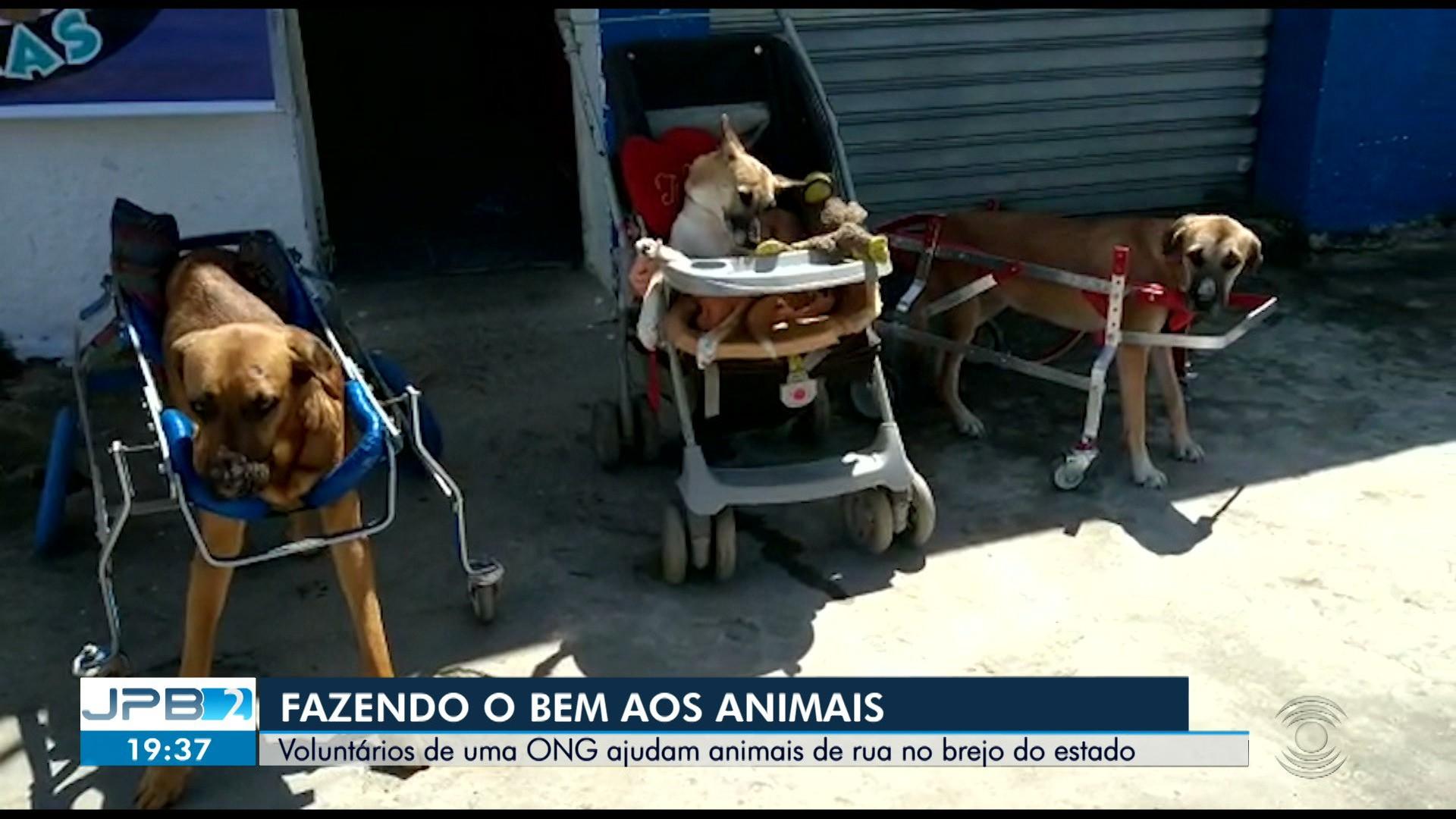 VÍDEOS: JPB2 (TV Paraíba) desta sexta-feira, 14 de agosto