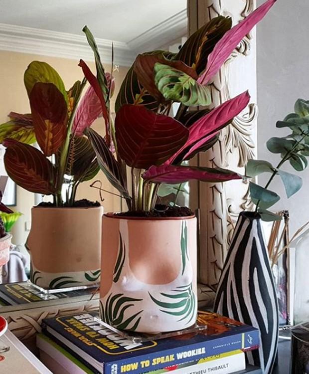 O roxo das marantas dá um ar exótico à decoração (Foto: Instagram/ Reprodução)