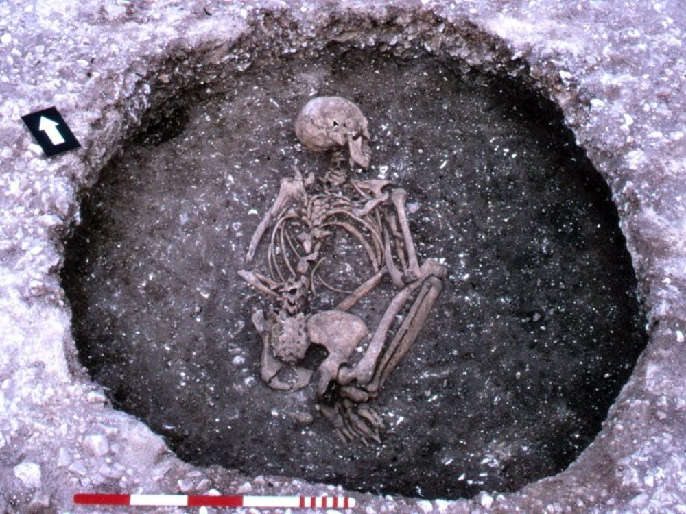 Um dos esqueletos que foi analisado na pesquisa da fibrose cística (Foto: Philip Farrell, CC BY-SA)