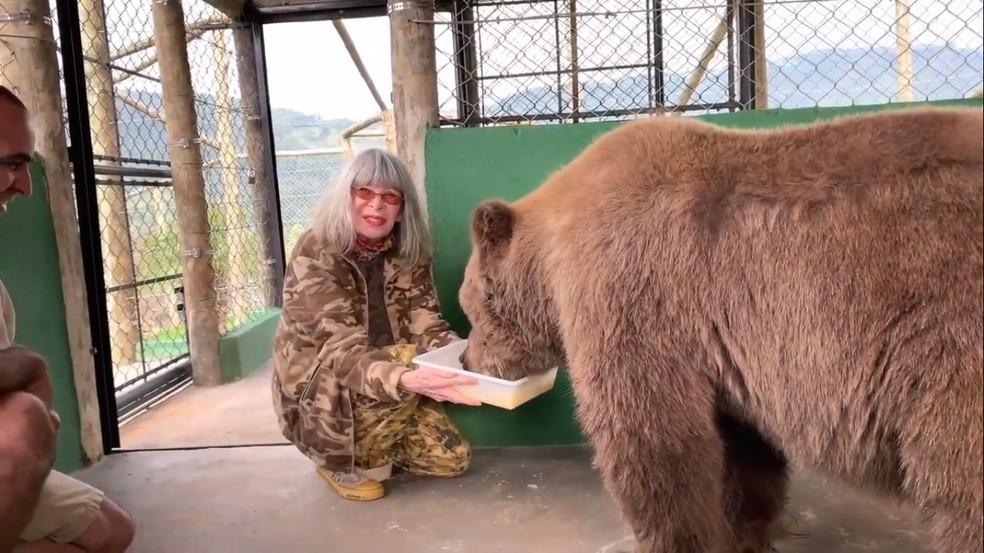 Rita Lee alimenta a ursa Rowena no Santuário dos Gnomos, em São Paulo — Foto: Reprodução/ Youtube