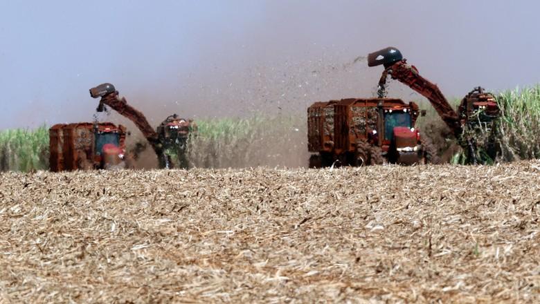 Colheita de cana-de-açúcar em Pradópolis (SP) (Foto: REUTERS/Paulo Whitaker)