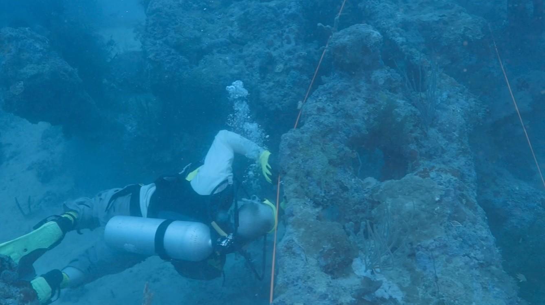 Mergulhadores investigam destroços no Oceano Pacífico (Foto: Divulgação/ Open Boat Films)
