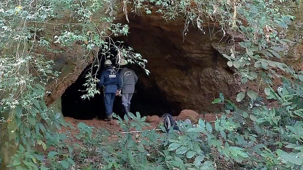 Foram registrados 12 mortes por raiva causado por ataque de morcegos e técnicos do Indea visita às propriedades rurais em MT — Foto: TV Centro América