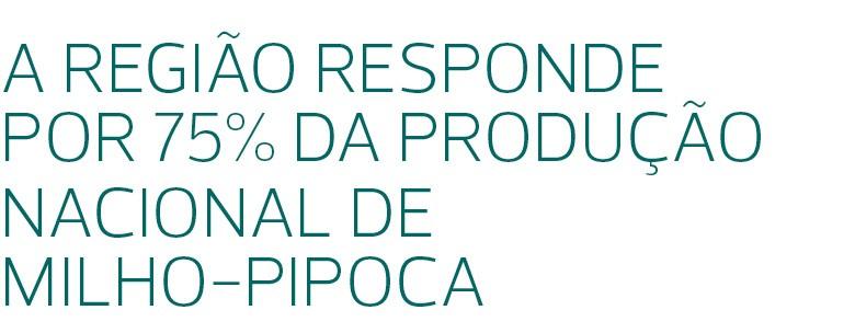 Campo Novo do Parecis (MT), maior produtor brasileiro de milho-pipoca e de girassol, também aposta em cereais, sementes e feijões (Foto: José Medeiros)