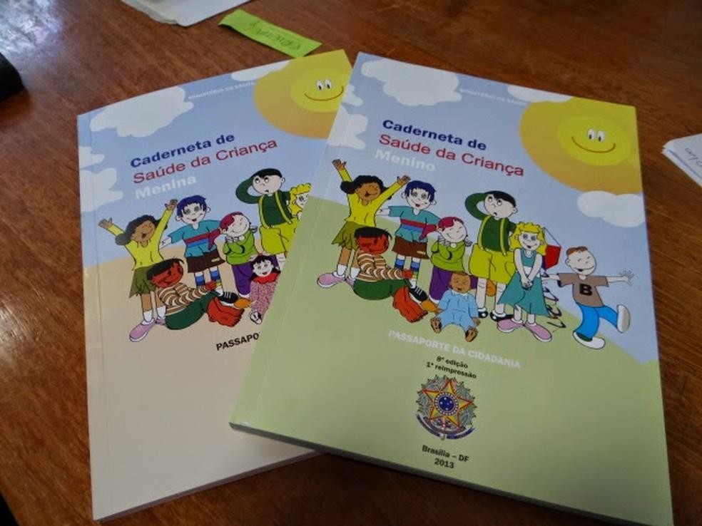 O documento acompanha a situação das crianças até os nove anos de idade. — Foto: Divulgação