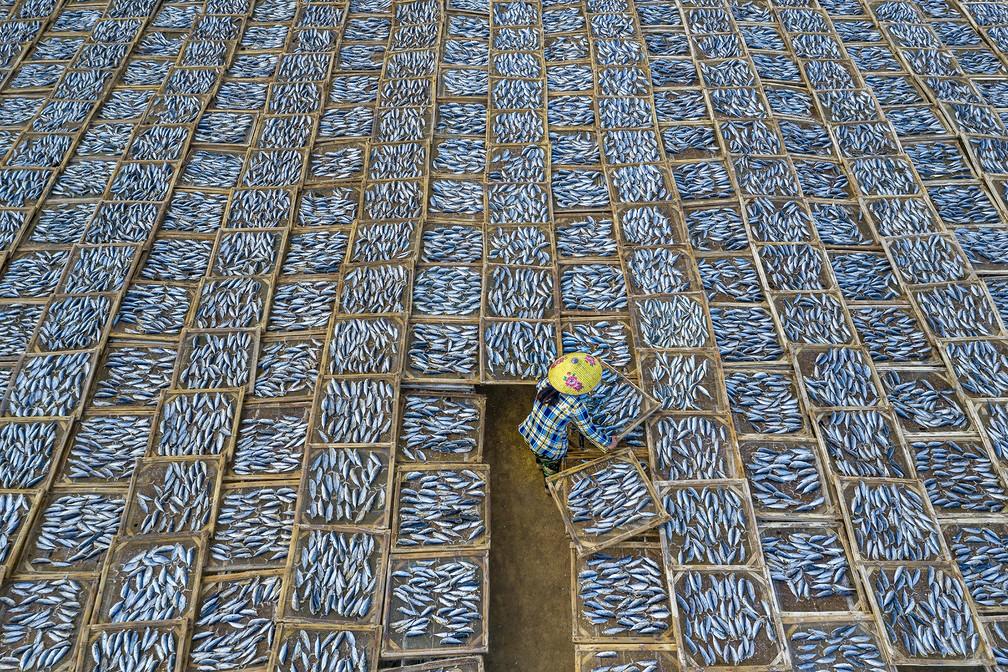 Viagem: 'Drying Fish', fotografia de uma mulher solitária cercada por centenas de bandejas de secagem de peixes no mercado de peixes Long Hai, em Ba Ria-Vung Tau, no Vietnã — Foto: Khanh Phan (Vietnã)/Sony World Photography Awards