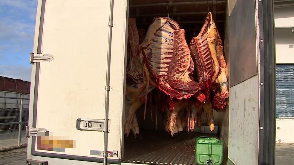 Carne foi apreendida em São Caetano (Foto: Reprodução / TV Asa Branca)