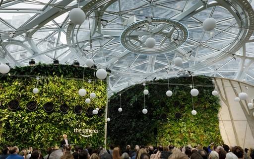 Novo edifício da Amazon tem 'floresta' interna, salas de reunião na árvore e até cachoeiras
