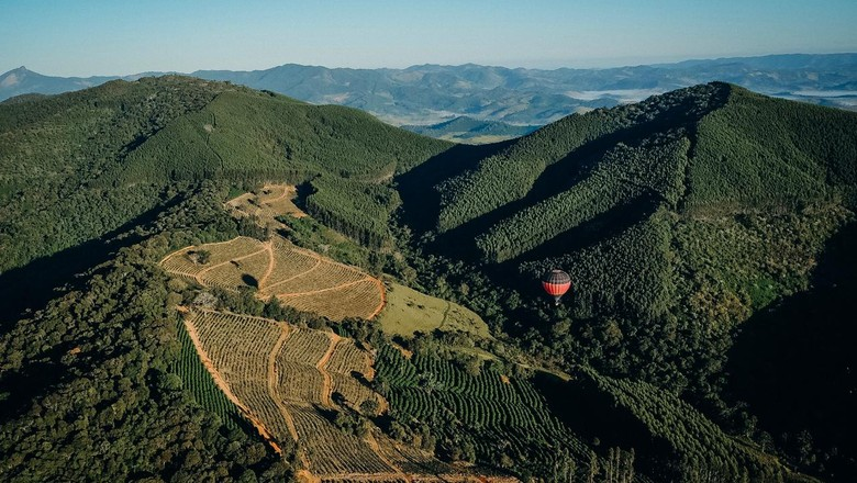 Durante o passeio de balão é possível ver cafezais, florestas nativas e plantações de eucalipto e banana (Foto: Selva Bizarria)