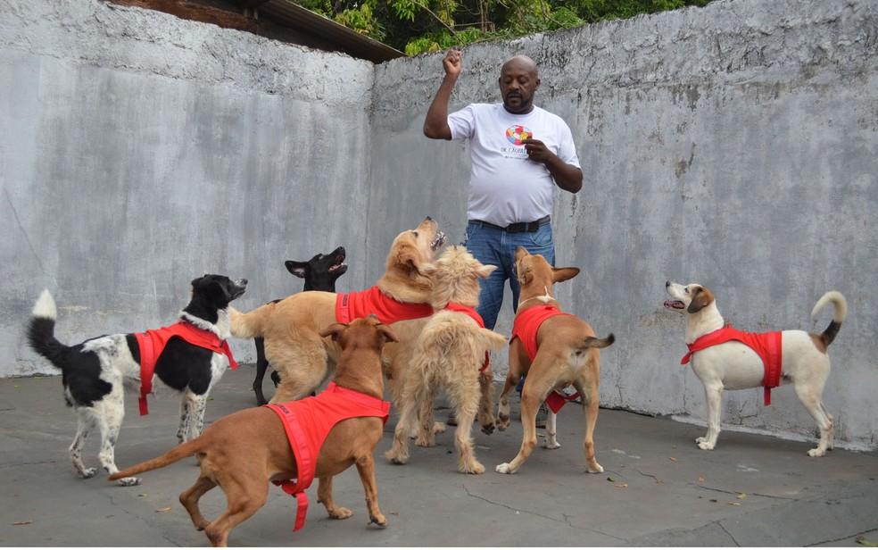 O adestrador André Luis brinca com os cães terapeutas do projeto Dr. Cãopaixão em Ribeirão Preto, SP — Foto: Foto: Werlon Cesar/G1