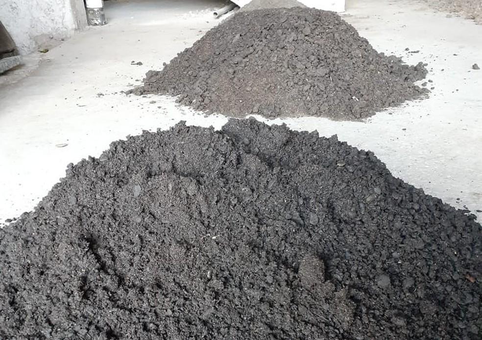 Projeto da Ufba transforma óleo recolhido de praias em carvão — Foto: Divulgação