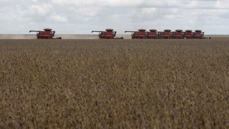 agricultura-soja-safra (Foto: Reuters)