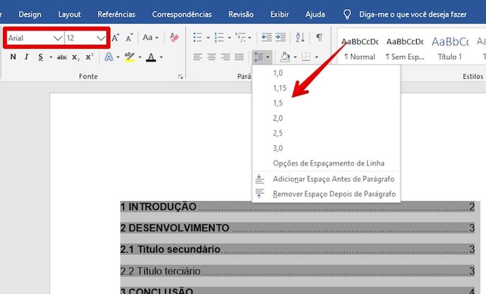Formatting summary contents Photo: Reproduction / Helito Beggiora
