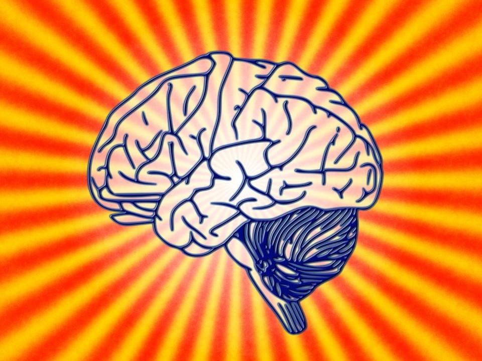 Cérebro (Foto: Pixabay/Geralt/Creative Commons)