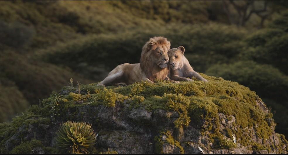 Cena de 'O Rei Leão', lançado neste mês pela Disney — Foto: Disney