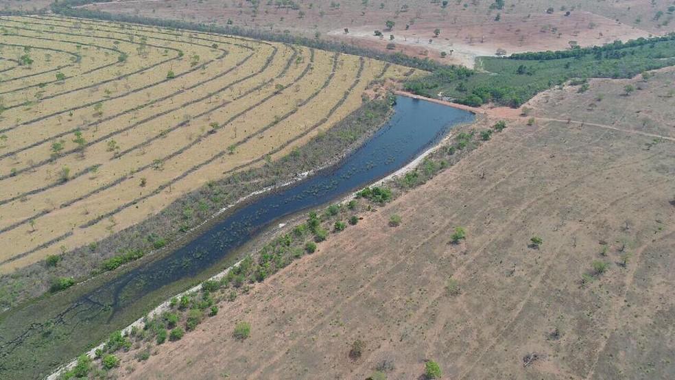 Localização e condições propícias para criação de gado foram definitivas para Mônica investir na propriedade rural, em Figueirão. — Foto: Mônica Hoop/Arquivo Pessoal