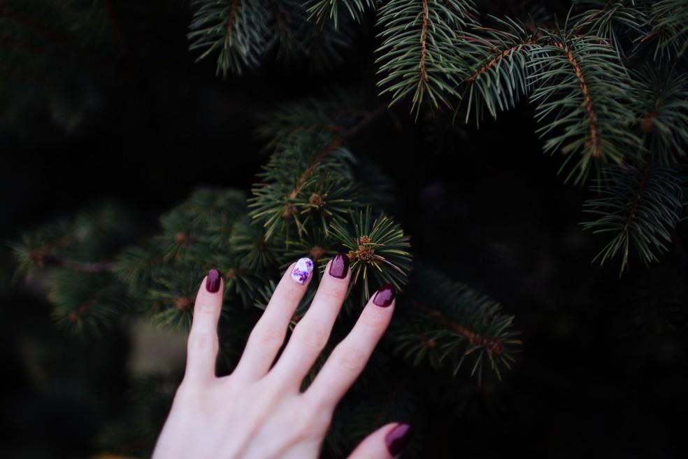A cor violeta ajuda a ter mais foco — Foto: Reprodução/Unsplash