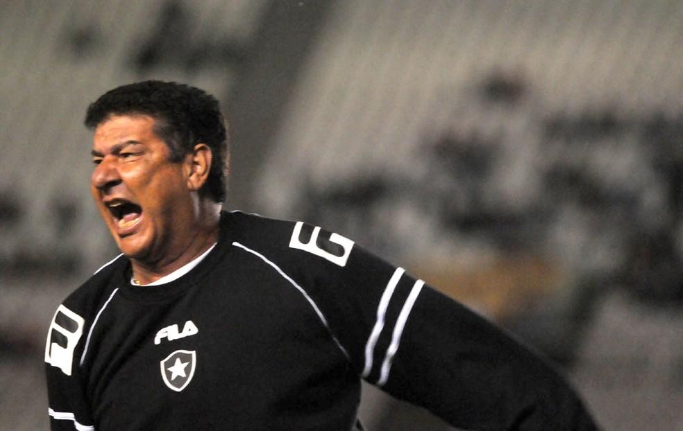 Joel treinou o Botafogo pela última vez em 2011 — Foto: André Durão / Globoesporte.com