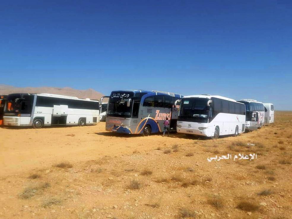 Ônibus são usados para retirar combatentes do Estado Islâmico e familiares de enclave na fronteira da Síria com o Líbano (Foto: Syrian Central Military Media, via AP)