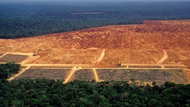 A destruição da vegetação nativa e as mudanças climáticas vão prejudicar diretamente o agronegócio no Brasil. (Foto: GETTY IMAGES VIA BBC)