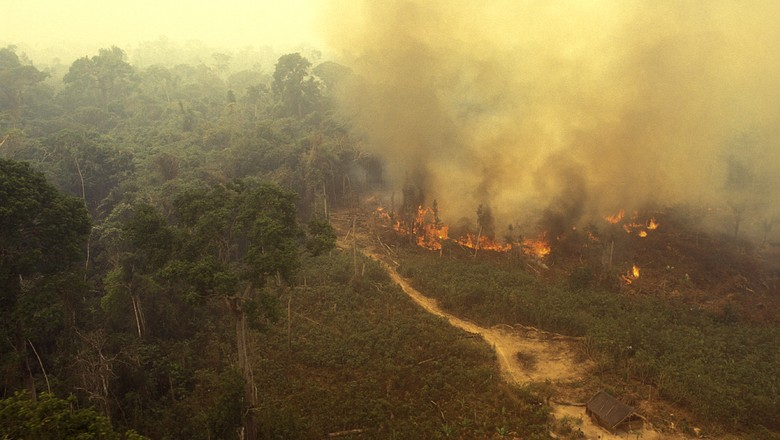 fogo-amazonia-incendio-floresta (Foto: Getty Images)