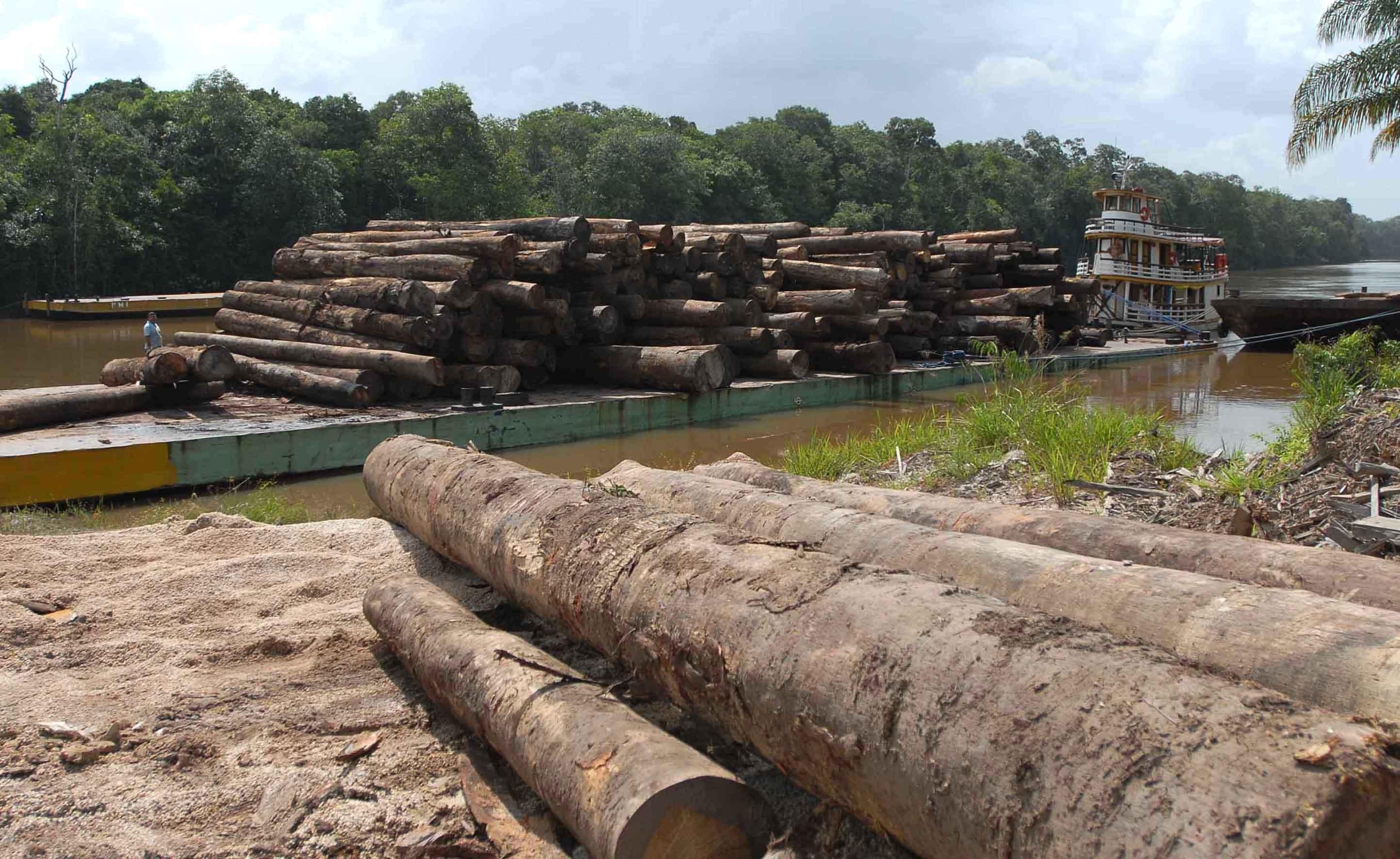 Desmatamento na Amazônia (Foto: Wikimedia Commons )