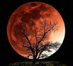 Lua, noite (Foto: Arquivo Google)