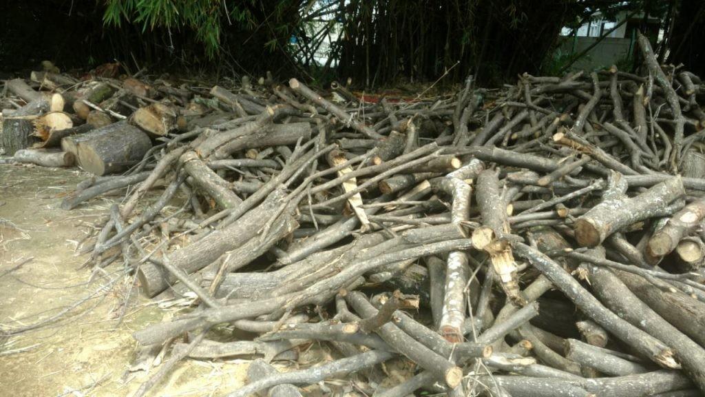 Condomínio e padaria são multados por crimes ambientais em Maceió