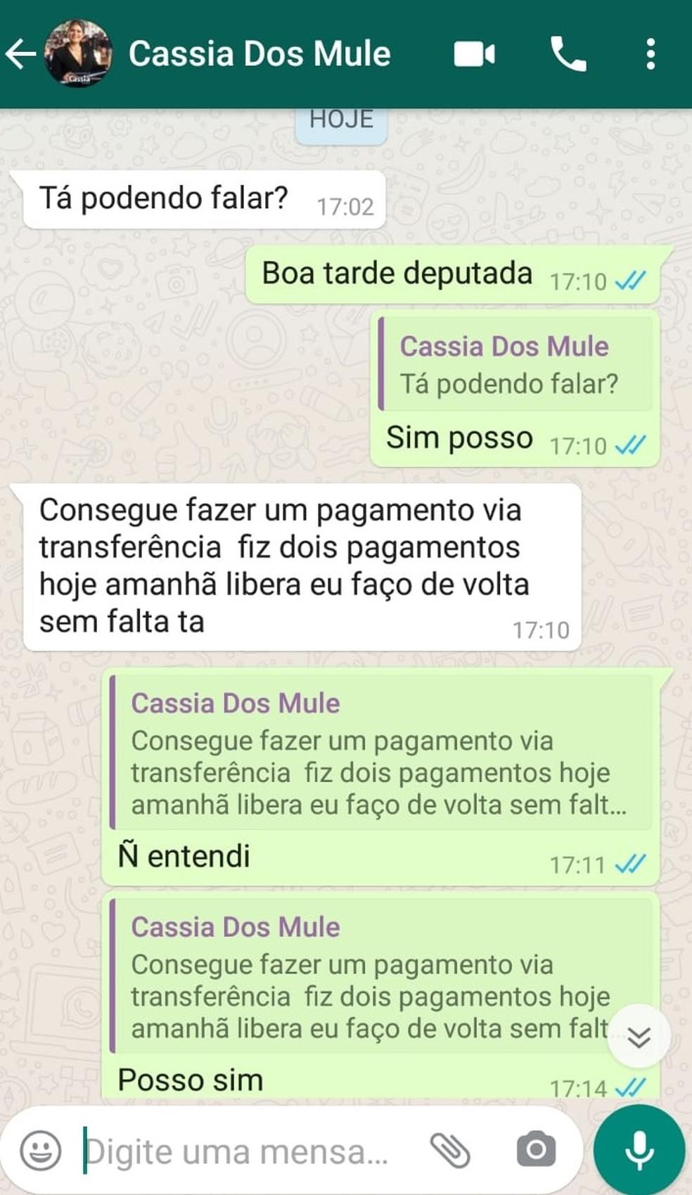 Deputada tem WhatsApp clonado em Rondônia — Foto: Reprodução