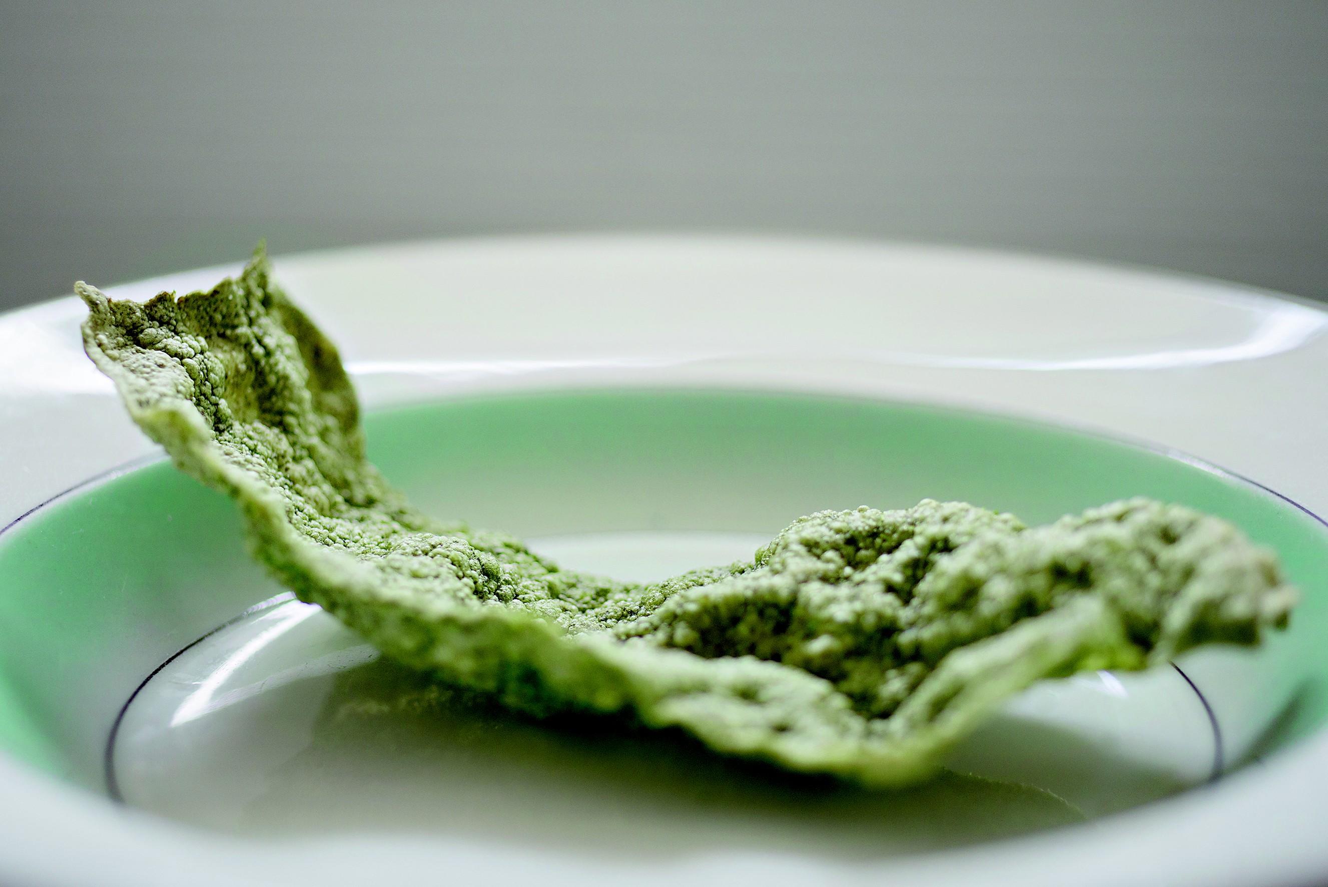 Chips feitos de microalga so SPACE10 (Foto: Niklas Adrian Vindelev)