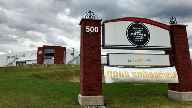 Placa do lado de fora da fábrica Canards du Lac Brome informa que eles estão contratando (Foto: Lorcan Archer via BBC News Brasil)