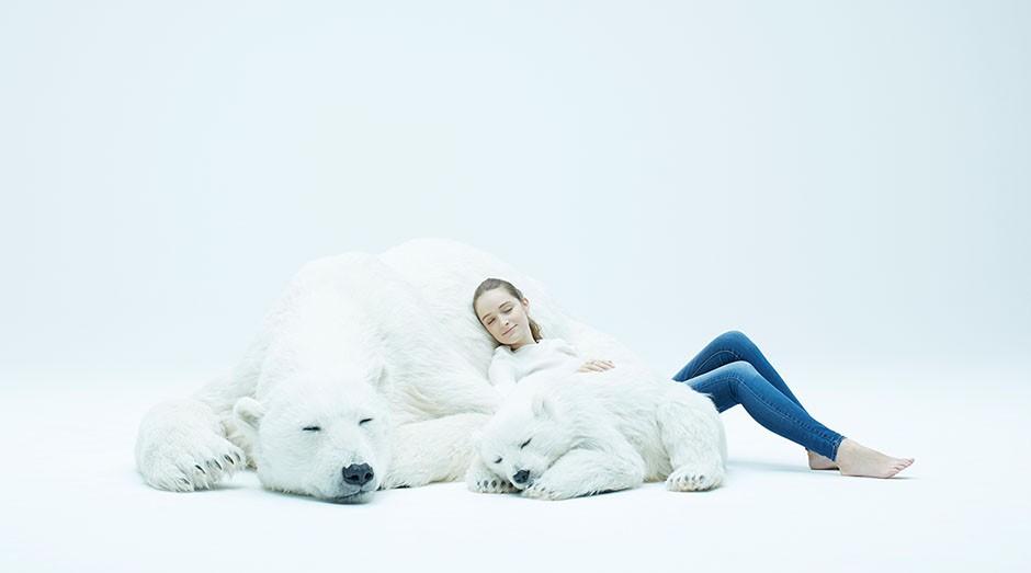 As réplicas são de dois ursos-polares, uma mãe e seu filhote, dormindo pacificamente. (Foto: Divulgação)