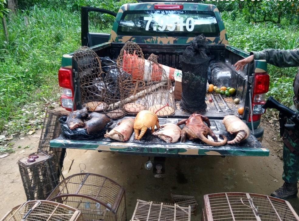 Quase 30 animais silvestres, sete armas artesanais e sete armadilhas de caça são apreendidos no sul da Bahia — Foto: SSP-BA/Divulgação