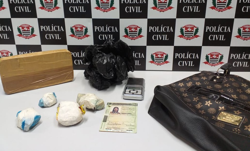 Mulher de 28 teve a prisão preventiva decretada após as apreensões na casa dela — Foto: Polícia Civil/Divulgação