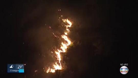 Incêndio atinge mata no Buritis, na Região Oeste de BH