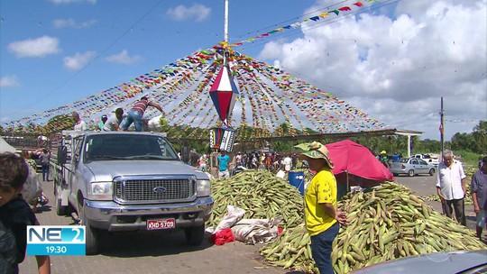 Ceasa tem grande movimento de clientes em busca de milho para o São João