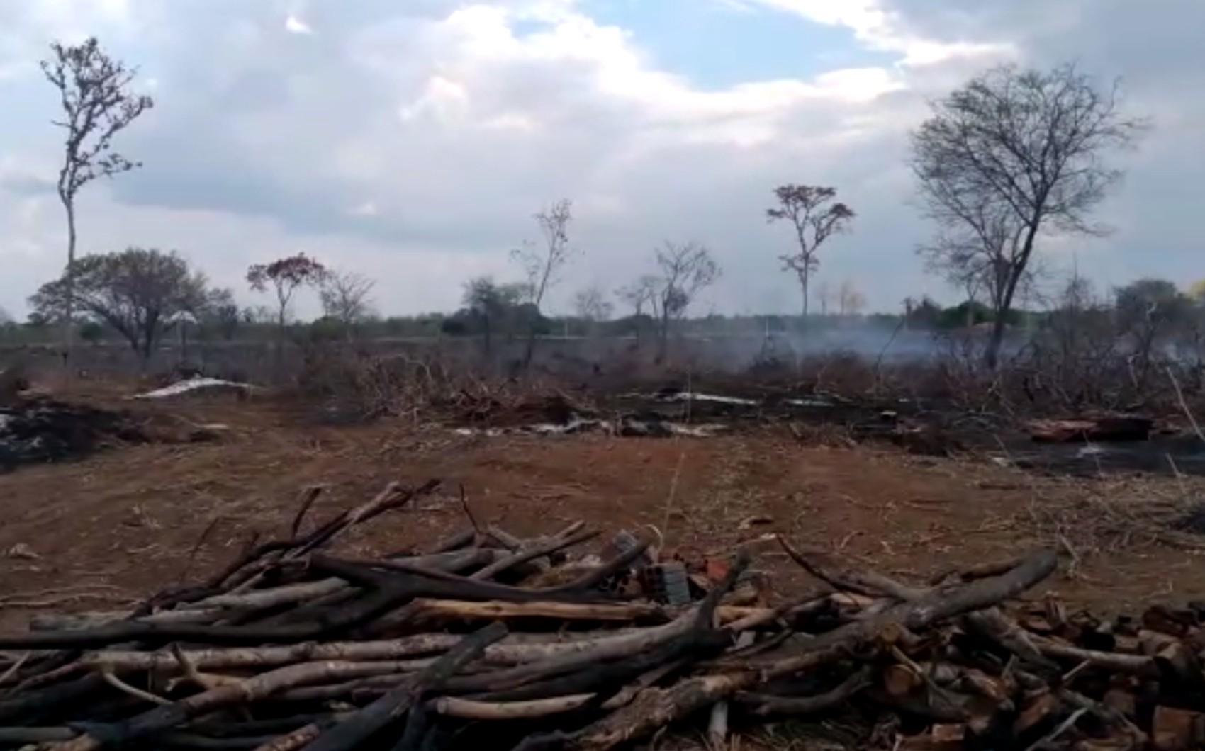Inema registra devastação em área de Mata Atlântica equivalente a 590 campos de futebol no interior da BA
