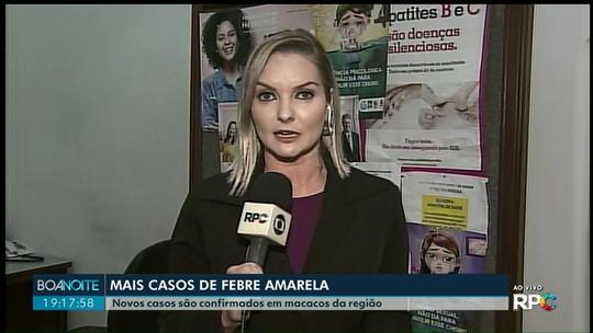 Febre amarela é confirmada em macacos em Castro, Carambeí, Ipiranga e Jaguariaíva