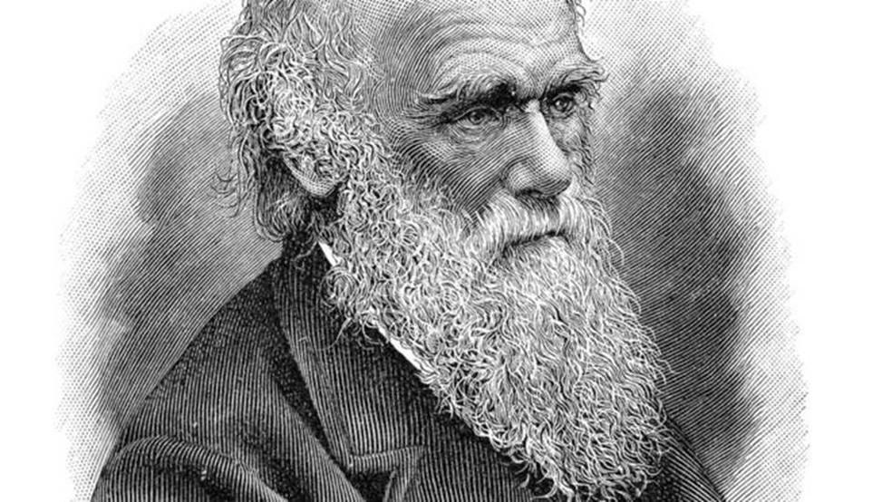 Retrato do biólogo inglês Charles Darwin, autor da teoria da evolução e do livro 'A Origem das Espécies' — Foto: Getty Images/BBC