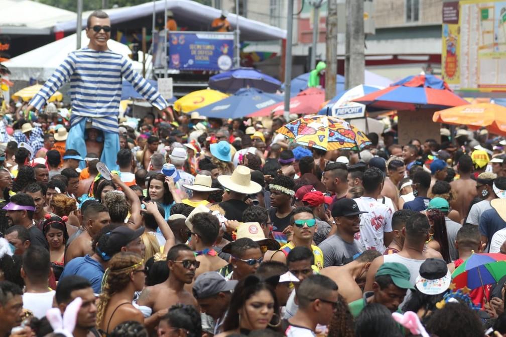 Foliões curtem o Galo da Madrugada, no Recife — Foto: Marlon Costa/Pernambuco Press
