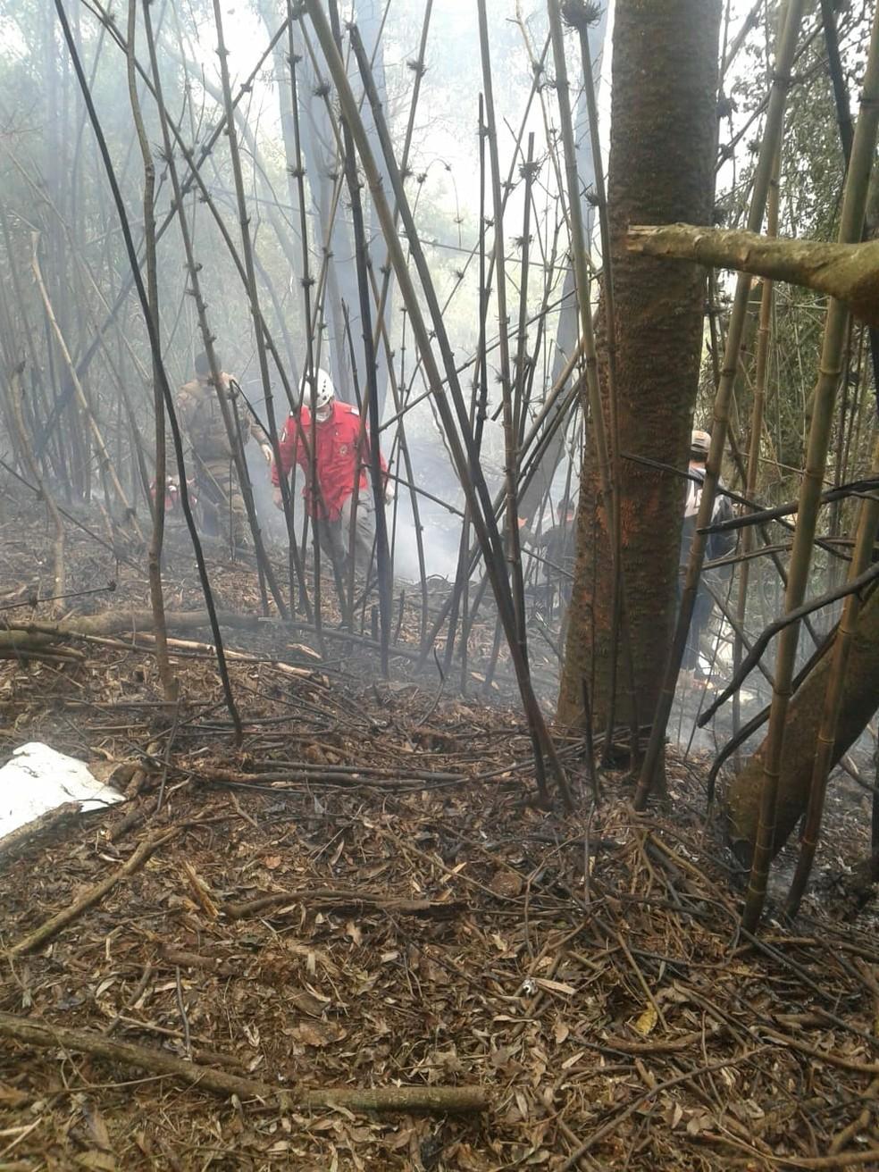 Bombeiros trabalham para conter as chamas — Foto: Corpo de Bombeiros/ Divulgação