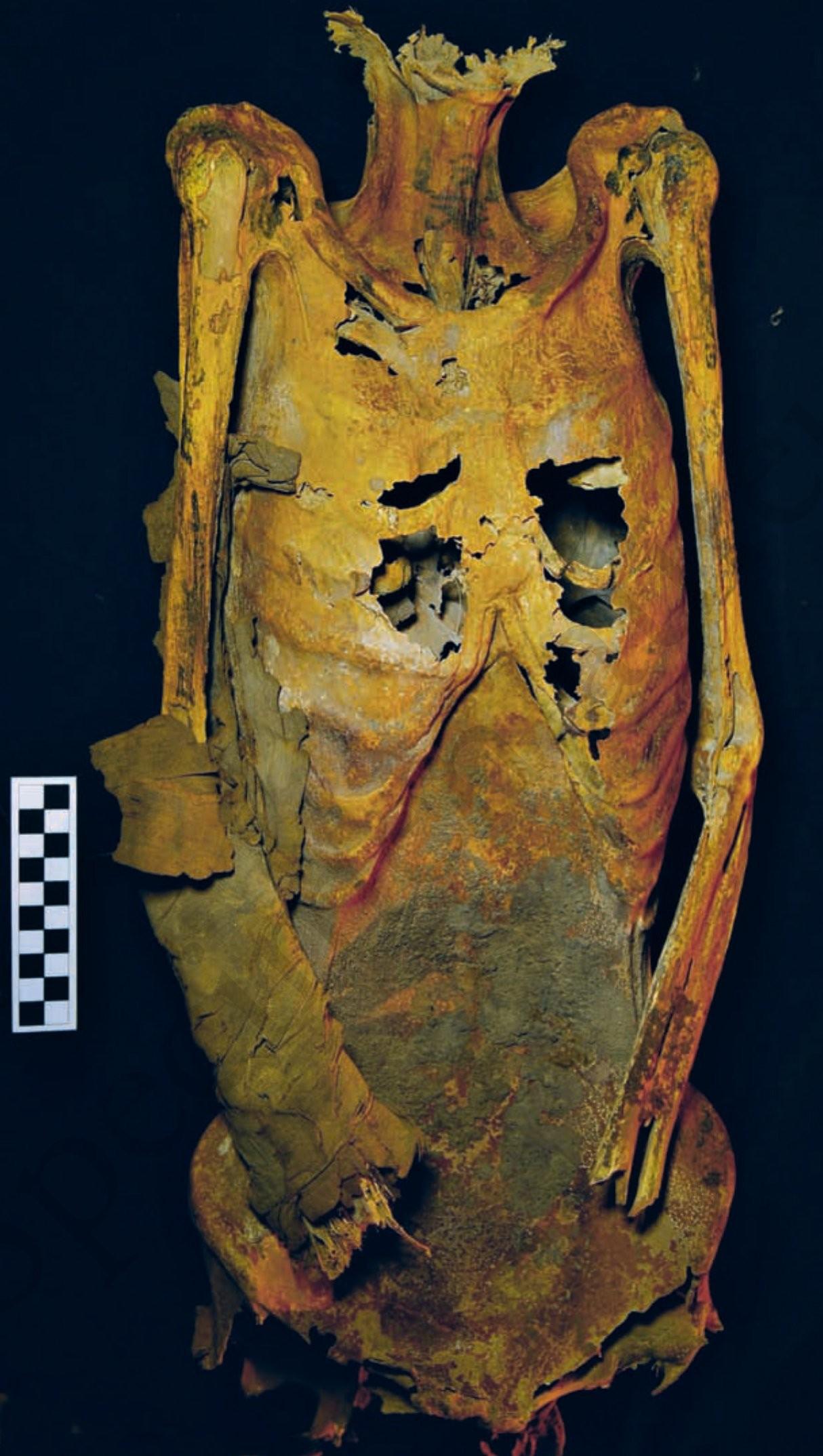 Múmia encontrada por pesquisadores (Foto: Divulgação)