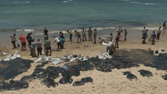 Nordeste: 150 toneladas de óleo recolhidas em Cabo de Santo Agostinho