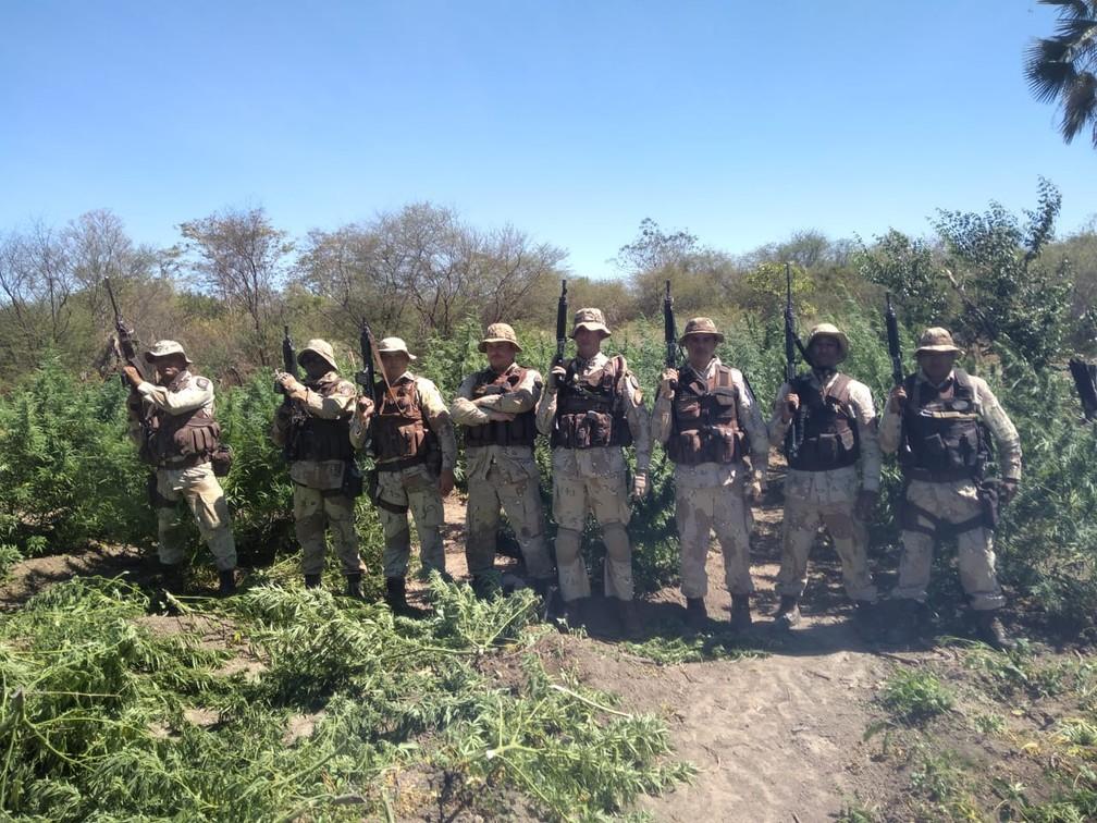 Policiais militares chegaram no local após denúncias — Foto: Divulgação/SSP-BA