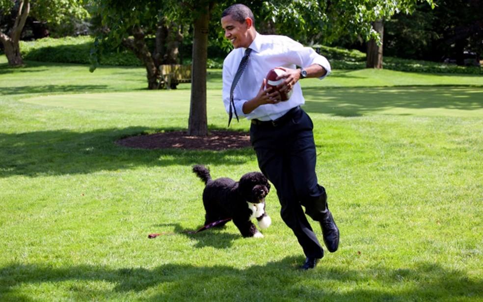 Bo brinca com o presidente dos EUA, Barack Obama, no gramado da Casa Branca em foto de 12 de maio de 2009 — Foto: White House/Pete Souza/Arquivo