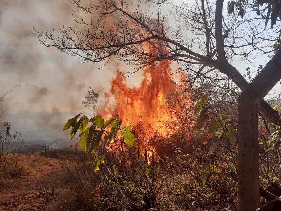 Fogo registrado no Recanto Aprazível em Bauru (SP) começou pela manhã e foi controlado apenas a noite nesta quarta-feira (25) — Foto: Defesa Civil/ Divulgação